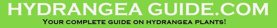 Hydrangea Guide